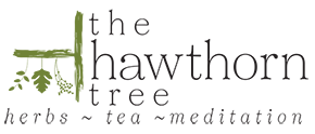 The Hawthorn Tree Logo