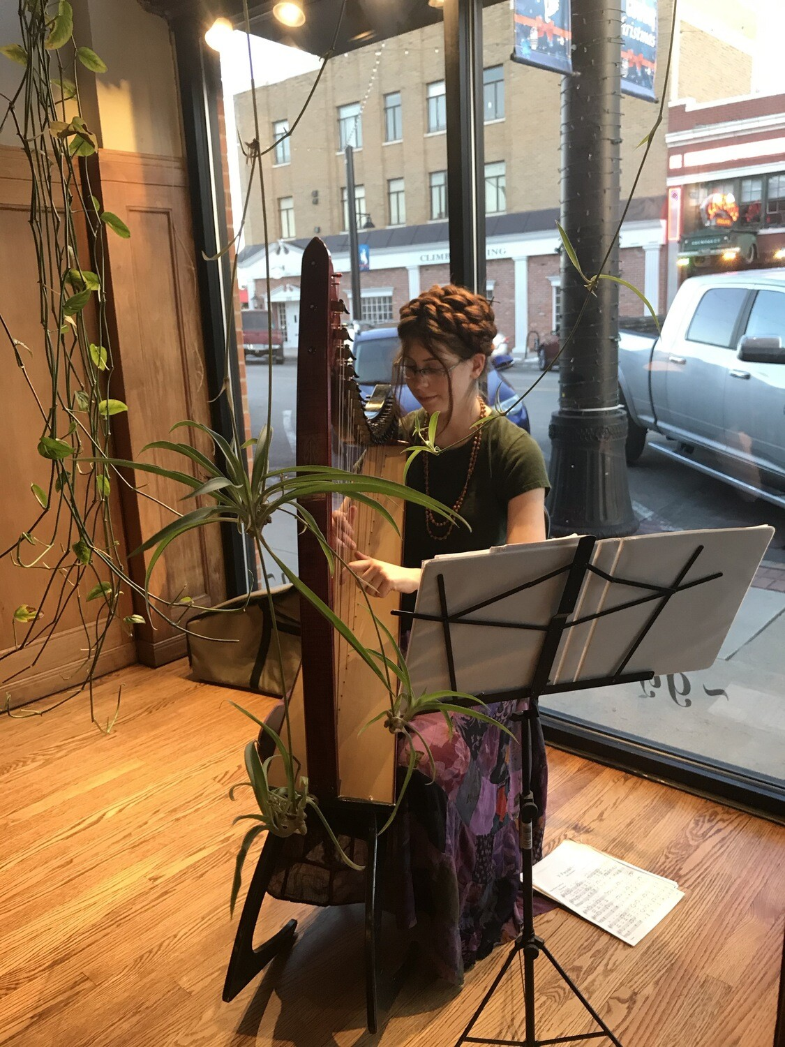 harpist reedemed strings at the hawthorn tree